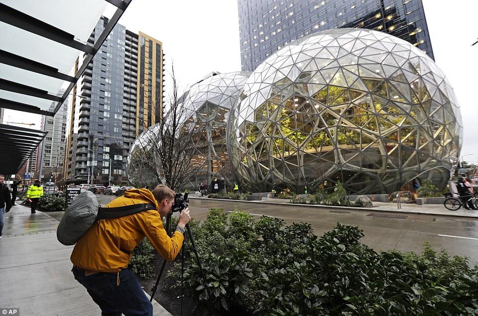 """壮观!亚马逊揭幕西雅图""""热带雨林""""办公区"""