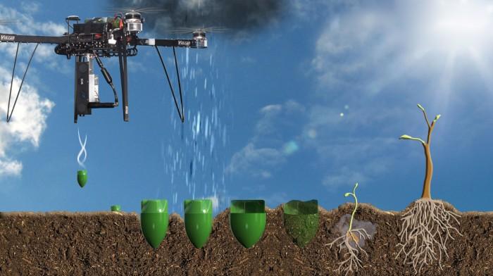 英国研发新型植树无人机 一天种10万棵树