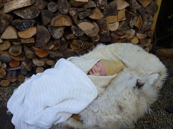 另类复古育儿法:英托儿所将婴儿带到森林里午睡
