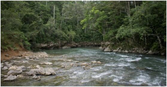 专家在危地马拉北部发现数千座古玛雅建筑