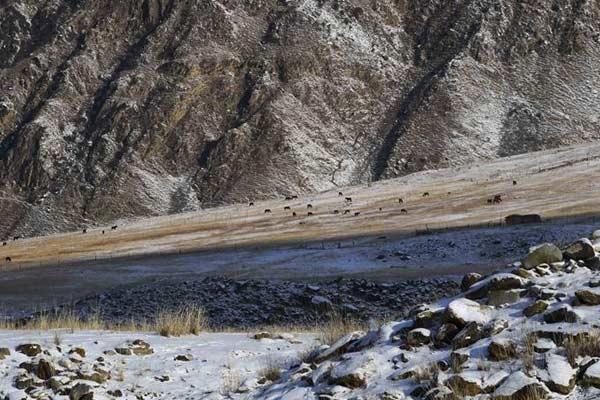走进天山深处的冬季牧场
