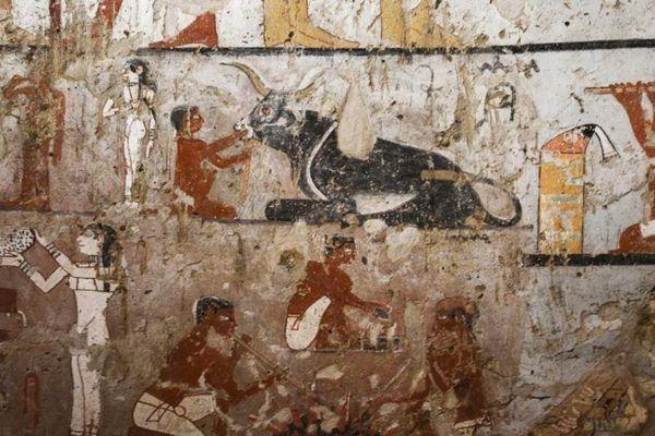 埃及吉萨发现4400年前女祭司墓 壁画罕见而完整