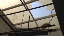 重庆男子挂灯笼时踩破玻璃  从10米高空坠落当场身亡