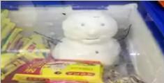南方姑娘把雪人藏冰箱显摆 网友看完笑岔气