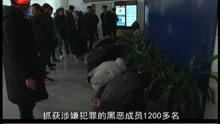 浙江警方扫黑除恶 抓获1200多名嫌疑人 破获案件500多起