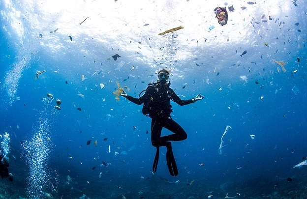 摄影师印尼潜水被垃圾环绕 海洋污染触目惊心