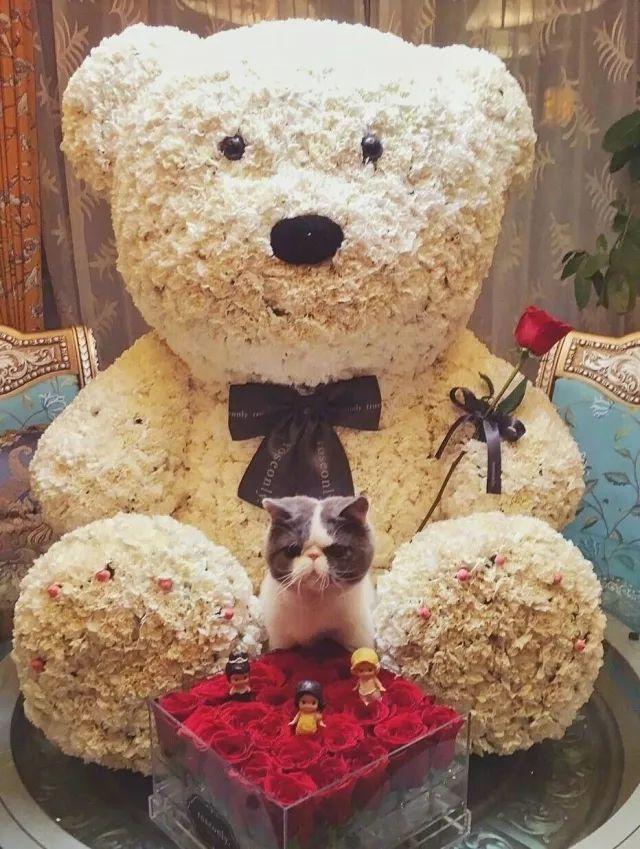 """情人节前期的狗粮我吃,但我只关心爱豆们""""罗曼蒂克""""式送礼物~"""