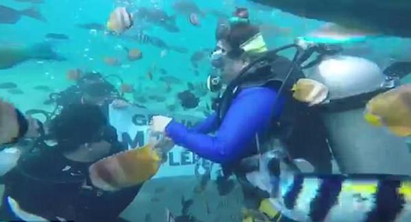 菲律宾男子海底浪漫求婚 鱼群簇拥羡煞旁人