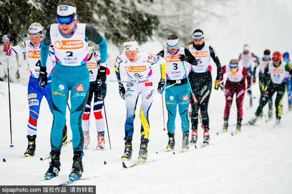 带你看懂平昌冬奥会——越野滑雪