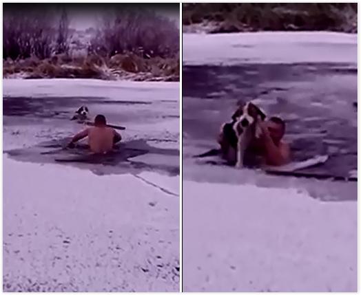 真的勇士!俄男子裸身跳入冰河中救被困狗狗