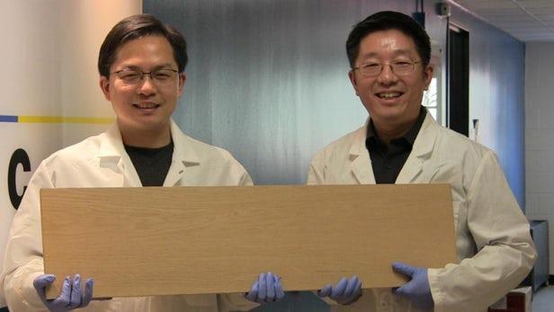"""马里兰大学研发如钢材一般强度的""""超级木"""""""