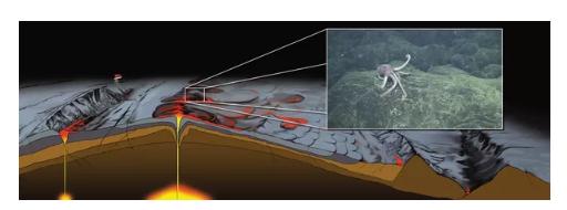恐龙灭绝的小行星撞击或许也引发了海底火山喷发