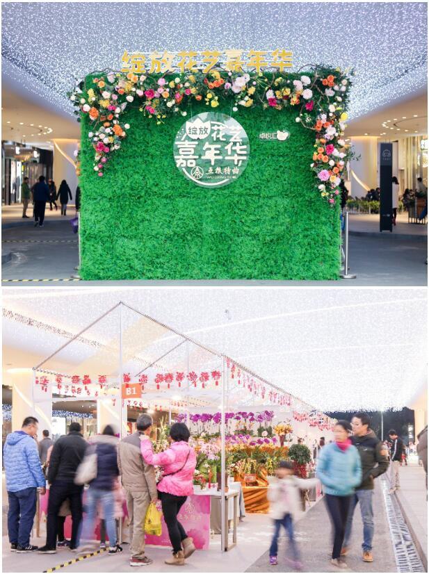 深圳花卉世界已成回忆 市民新春都来这儿逛