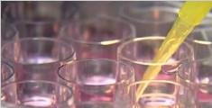 不孕症大突破! 科学家首次在实验室培养出成熟人类卵子