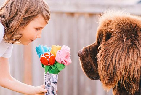 狗年看最暖萌画面:萌娃与萌犬的治愈系日常