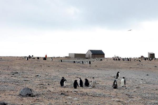 中国科考队参与修护南极历史遗迹建筑