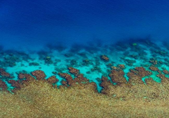 摄影师航拍大堡礁:这么美丽值得去守护