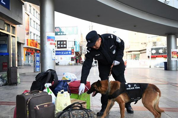 """警犬""""虎子""""的新春第一班岗"""
