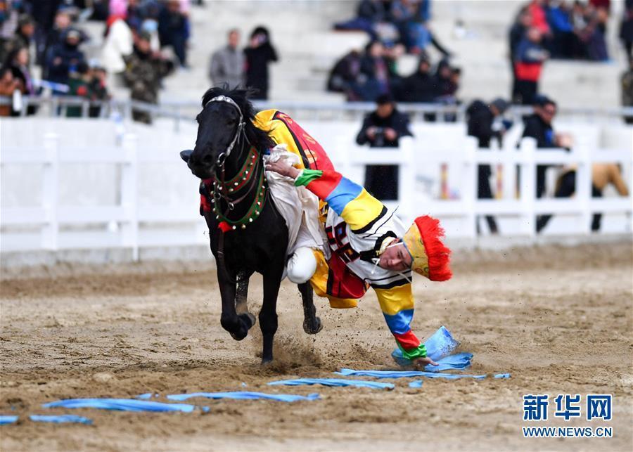 民族体育——传统马术表演庆藏历新年