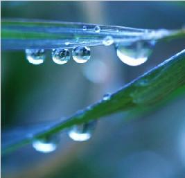 """19日""""雨水"""":我国大部地区气温回升至零度以上"""