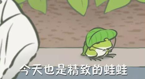 春节我的蛙精致又会拍照堪比倪妮