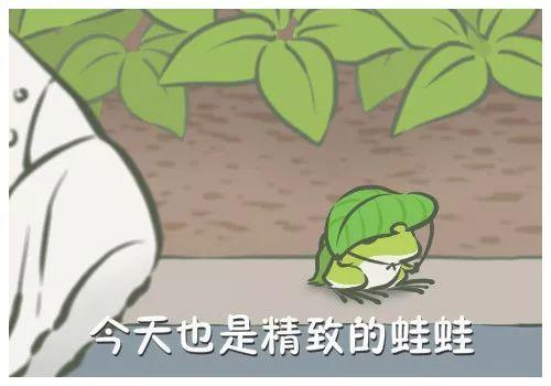 我的蛙终于寄回明信片啦,这难道不是倪妮么?