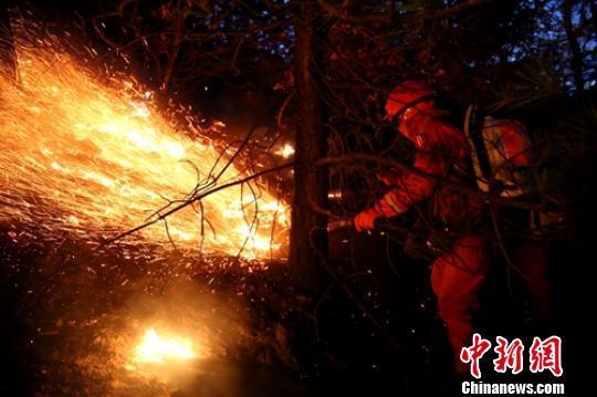 """四川省雅江""""2.16""""森火已无明火 5名嫌疑人被控制"""