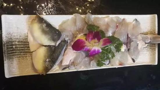 春节家宴惊现河豚鱼 从哪买如何吃才能最安全?