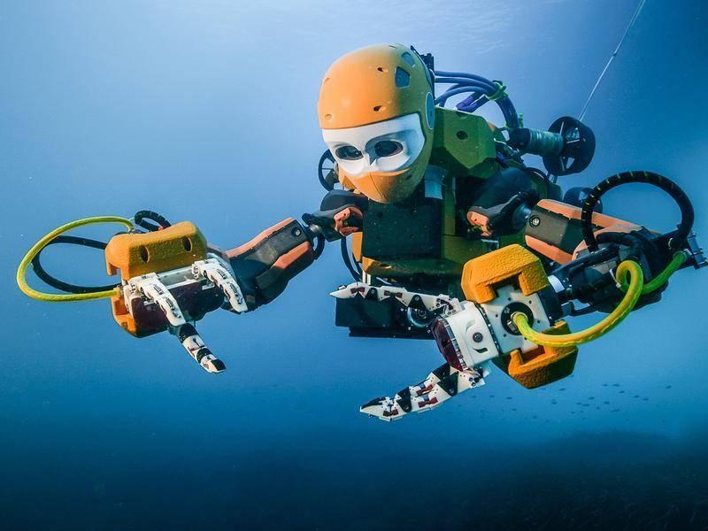 千亿美元新蓝海:机器人养鱼了解一下?