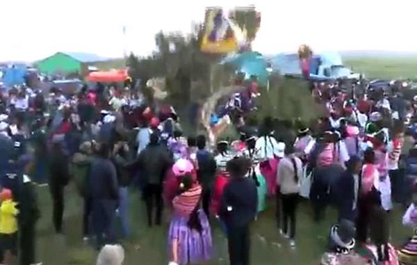 倒霉!秘鲁男子狂欢节传统砍树活动中被树压死