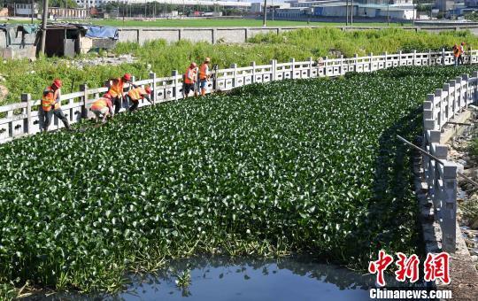 北京快乐8在哪可以买:环保部通过今年黑臭水体整治等方案_明确验收标准