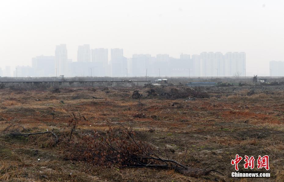 探访2022年第19届亚运会亚运村地块
