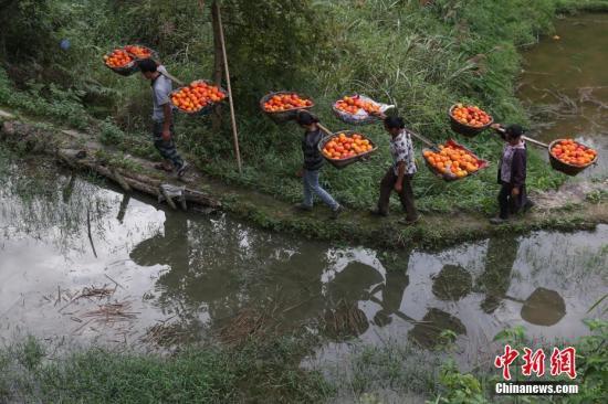 """经济观察:中国经济""""高质量发展""""还要过哪些关?"""