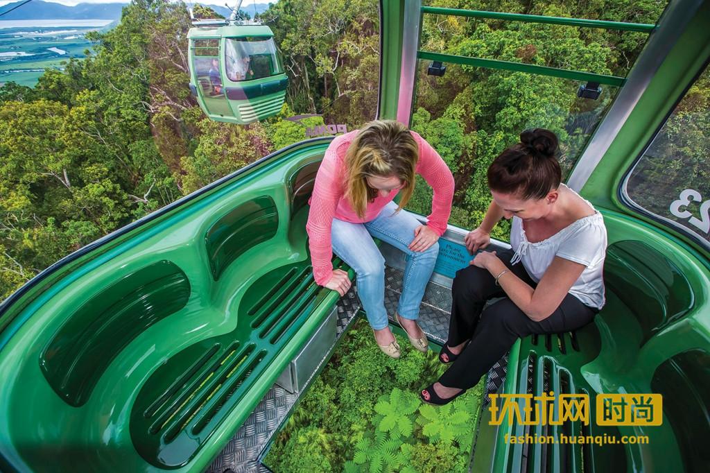 汪年旅游去哪里?昆士兰热带雨林适合你!