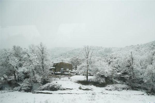 法国尼斯大雪导致航空交通停滞