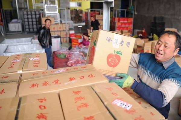 陕西黄陵开启苹果销售季