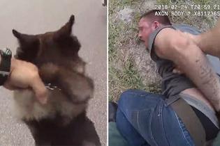 美警长和警犬默契配合 逮捕两名逃跑嫌犯