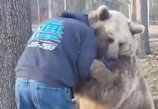 """温馨!美饲养员与憨萌棕熊上演现实版""""熊抱"""""""
