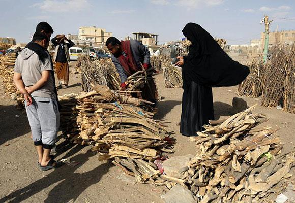 也门战乱致燃气供应不足 民众购木柴做饭