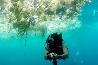 英男子潜水记录巴厘岛海洋污染 塑料垃圾触目惊心