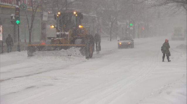 大雪致纽约近一半航班取消 几千户家庭断电
