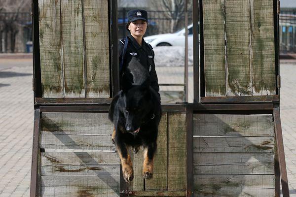 新疆携犬女特警