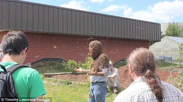 勇敢!美国一教授头颈爬满蜜蜂授课震惊学生