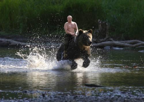 普京到底骑没骑过熊? 本人终于亲自回应了