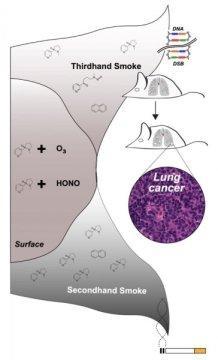 三手烟增加肺癌风险 室内环境普遍残存三手烟