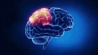 """营养专家公布""""全天健脑计划""""!7件小事每天都能做"""