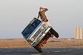 沙特年轻人公路上演侧壁滑车特技