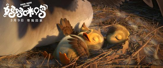 """《妈妈咪鸭》成""""妈妈""""首选 揭秘小黄鸭的诞生"""