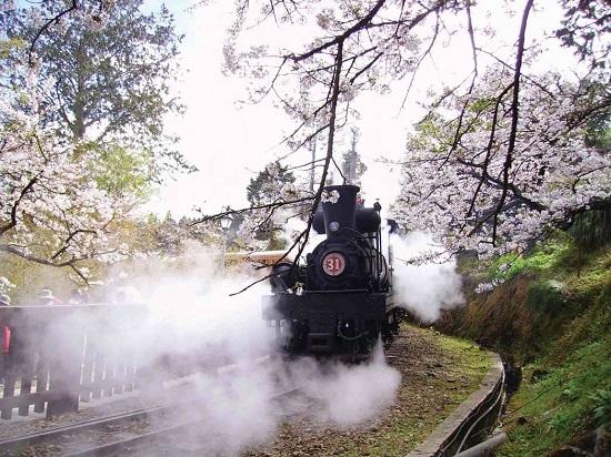 森铁员工爆阿里山小火车用焊补轮 专家称安全堪虑