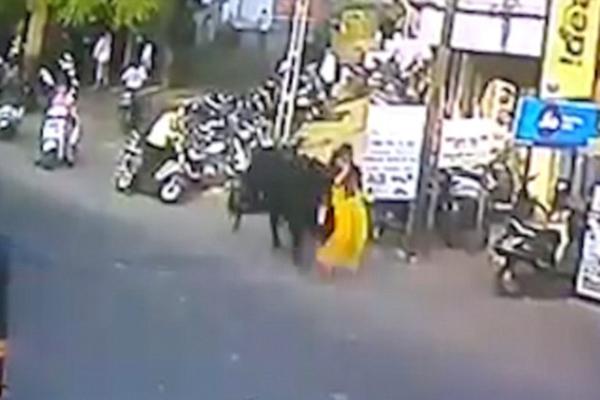 飞来横祸!印度一女子马路上被公牛从背后顶飞